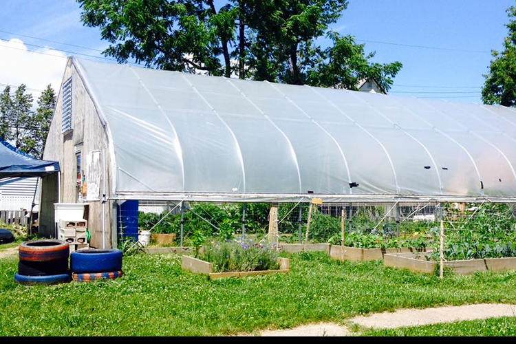 Refugee urban farm on Tri-Main Center vacant property.
