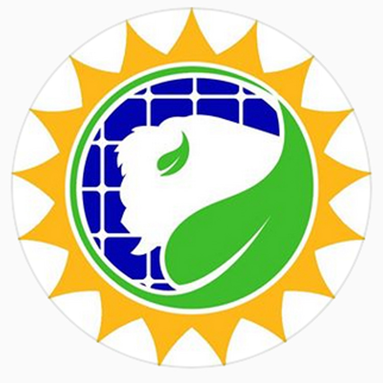 The logo of Buffalo Solar Solutions.