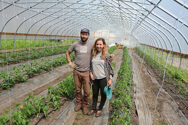 Groundwork Market Garden owners Anders Gunnersen and Mayda Pozantides stand in their greenhouse of freshly planted tomato plants.