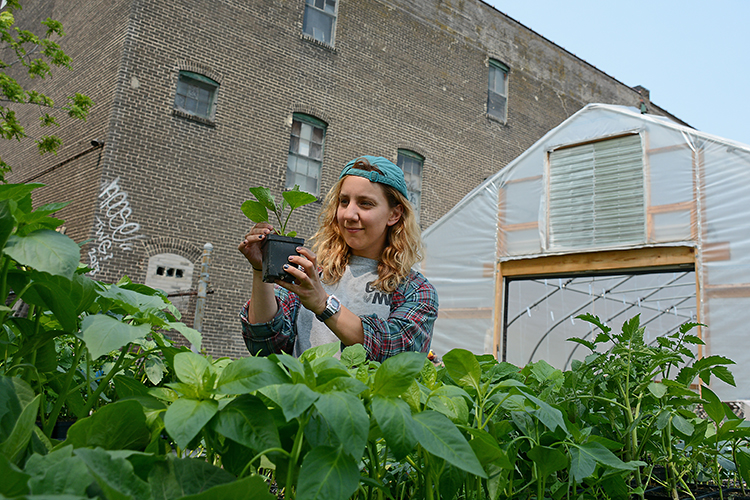 Framed by the urban surroundings of Buffalo's East Side, Mayda Pozantides tends to her plants.