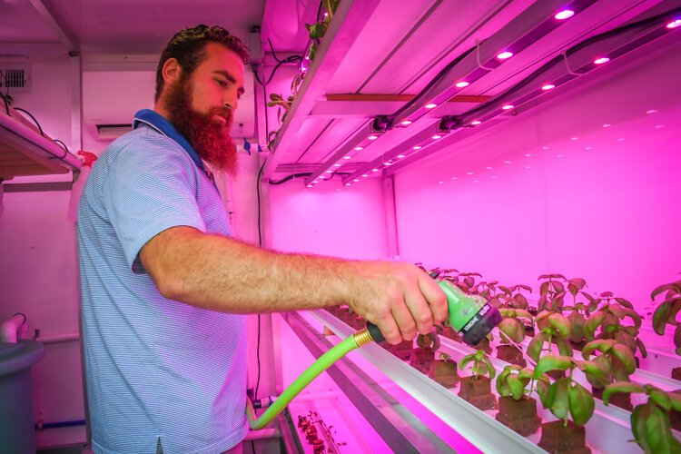 Sal LaTorre waters sprouts in the grow pod on the outside of the property at Castle Campus.