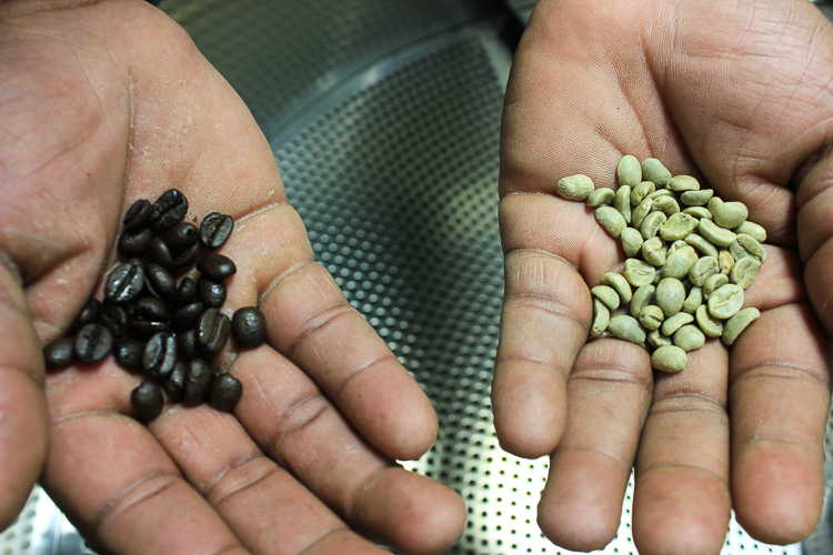 A view of coffee beans before and after they are roasted.