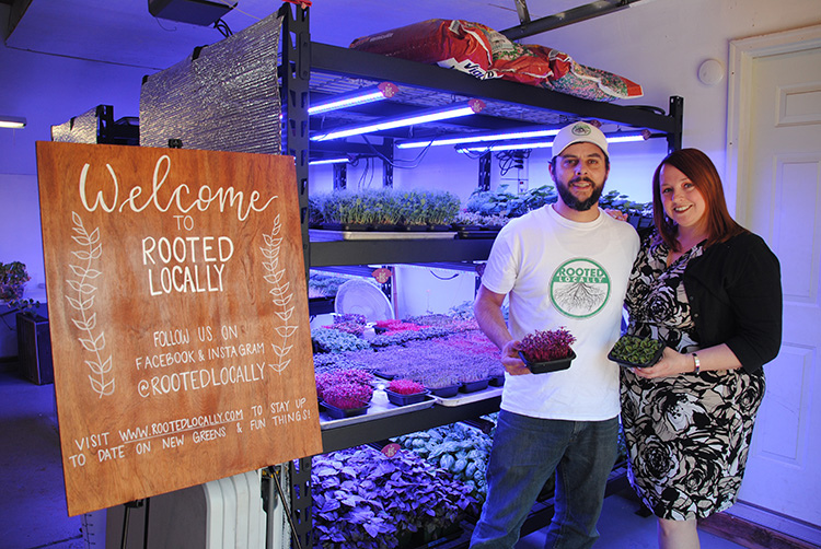 Husband-and-wife-team Justin and Lisa Brocato use vertical farming methods to provide their customers with locally grown, high-quality micro greens year round.