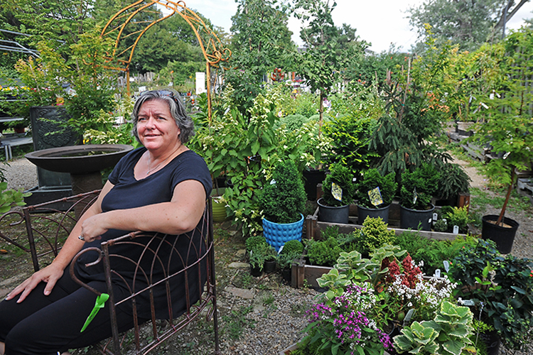 Flanked by the bloom of late summer, Patti Jablonski-Dopkin, general manager of Urban Roots Community Garden Center, sits in the courtyard/showroom of her plant nursery.